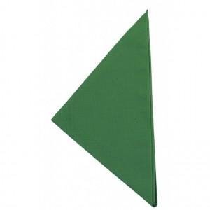 Triangolo Kelly Green